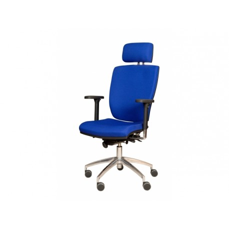 Bridge Multisystem - Executive Office Chair