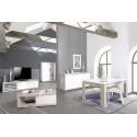 Arto white and grey gloss coffee table