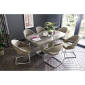 Paleo luxury cantilever dining chair