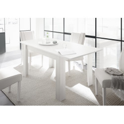 Arden extendable dining table in matt white