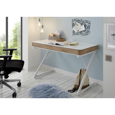 Tula II office desk in matt lacquer finish