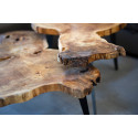 Beauty - set of tables in natural shape