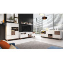 MOVE modern TV Stand in Grey Matt and Nut Wood Imitation