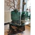 Tree Root Unique Round Coffee Table with Glass