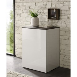 Tambura- high gloss cabinet with door