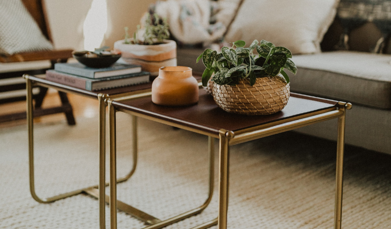 two coffee tables with a pot-plant on it