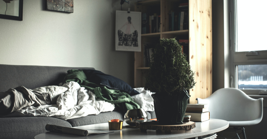 sheets on a sofa with a small table and a plant on it